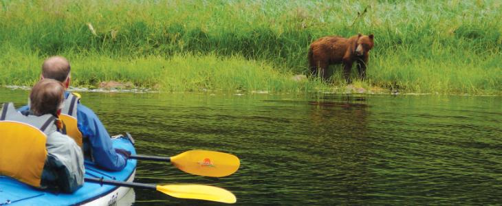 831619827_bear_kayak-flpped.jpg